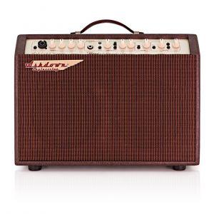 Ashdown Woodsman Jumbo 65w Combo Acústica