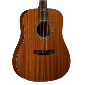 Bristol BD-15S Acoustic Guitar