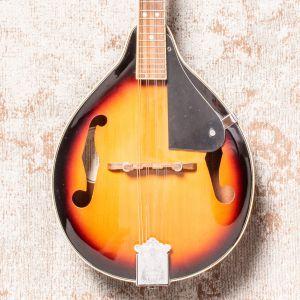 Fender W FM-100 Mandolin Pack