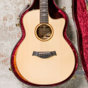 Taylor Custom GS Electro-Acoustic Guitar