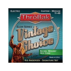 ThroBak Vintage Choice Nickel Wound Hex Core Custom Medium 11-49